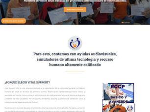 Vital Support - Diseño de sitio web corporativo por Mouse Interactivo